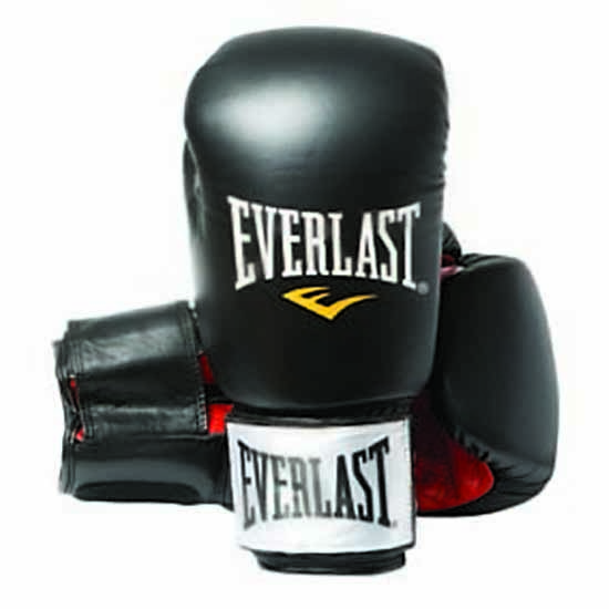 Everlast equipment Leather Boxing Gloves Fighter