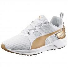 Puma Ignite XT v2 Gold