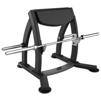 Bodytone Standing Scott bench